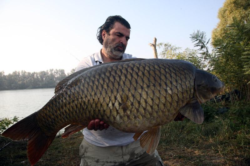 рыбалка в октябре сазан